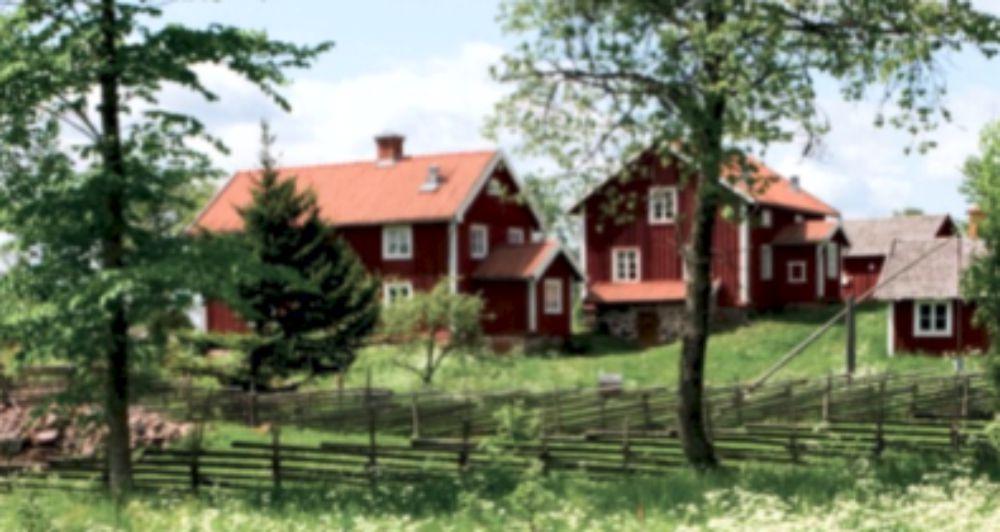 Schweden Pure Scandinavian Landhausdielen in Eiche